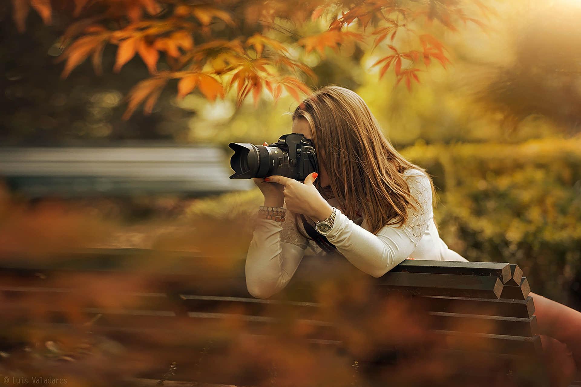 秋天的公园,树枝,女孩,长凳,相机,摄影,图片_彼岸图网